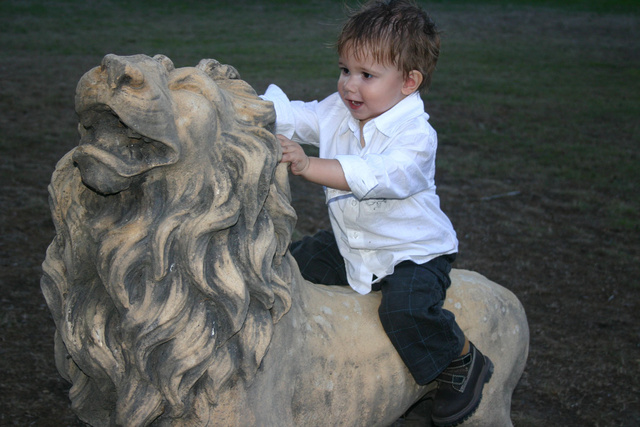 Hunter riding the back of a Lion at Clara and Callum's wedding