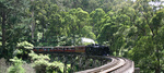 Puffing Billy, crossing it's famous bridge