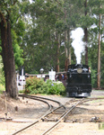 Puffing Billy coming around the bend