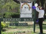 The wedding location:  Hedgend Maze, Healesville